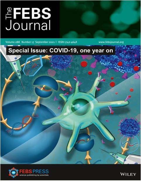 FEBS Journal Special Issue: COVID‐19, one year on