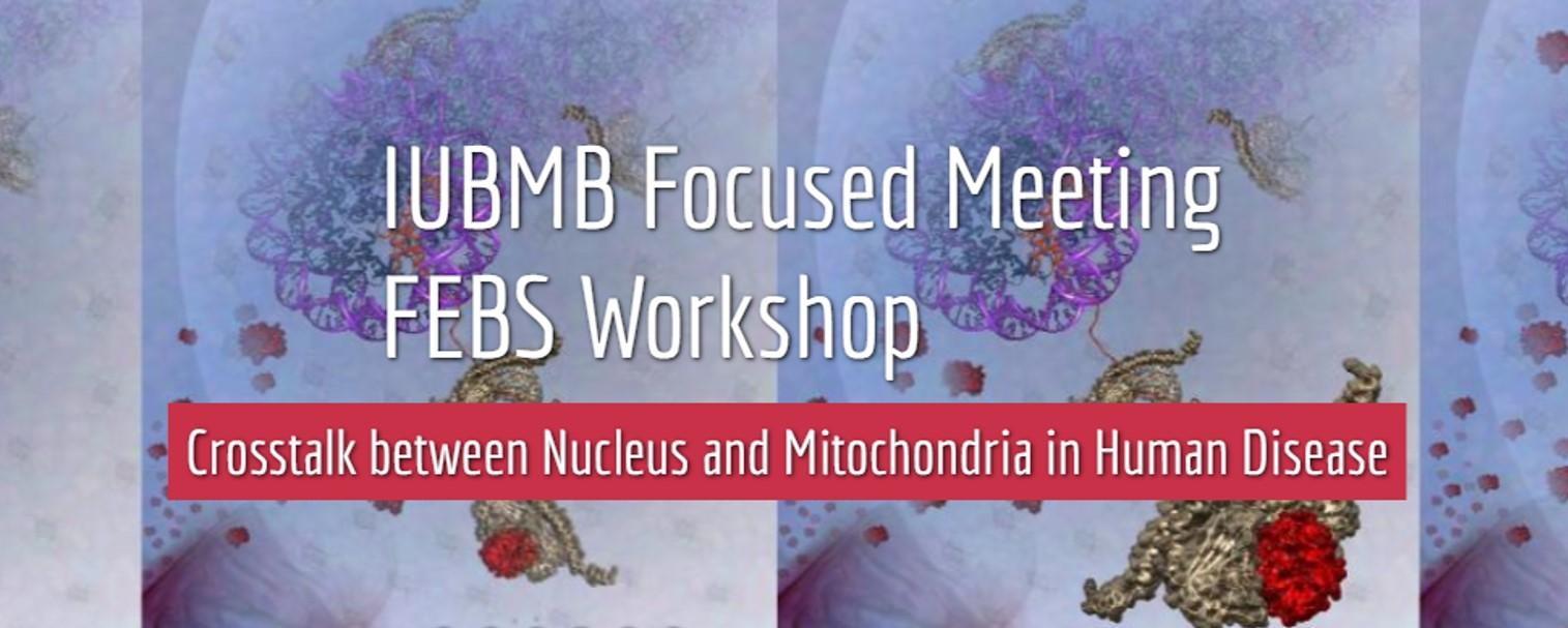 """The IUBMB Focused Meeting & FEBS Workshop on """"Crosstalk between Nucleus and Mitochondria in Human Disease"""""""